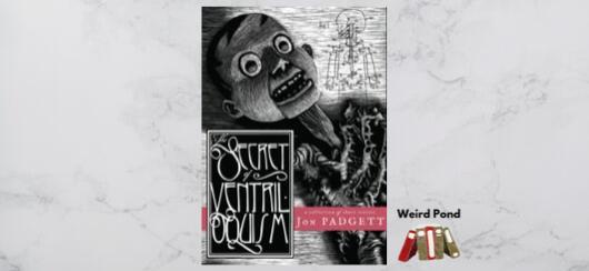 """The Secret of Ventriloquism"" Jon Padgett - review"